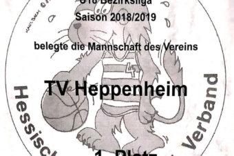 Meisterschaften und 2. Sieger 2018/2019